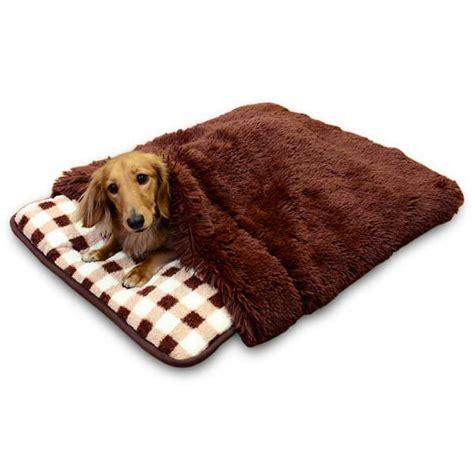 sleeping bags in stock now petplanet co uk