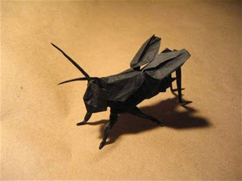 oryzasativa iii origami macam macam serangga