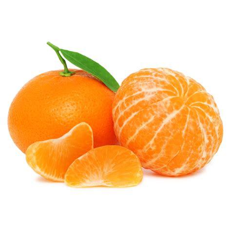 Jeruk Manis up it s clementine season collegebasketball