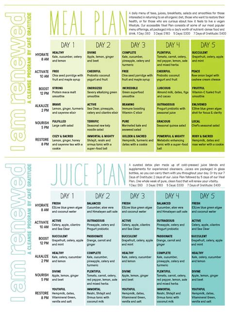 Detox Menu Ideas by 25 Best Ideas About 7 Day Cleanse On 7 Day