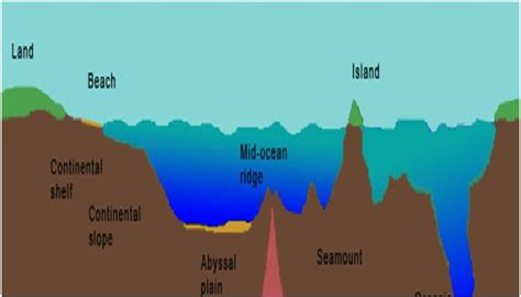 Continental Shelf Waves by Its Parts