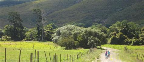 lismore cottages businesses in swellendam