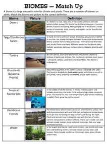 From Pond To Forest Worksheet Answers by 1000 Ideas About Biomes On Food Webs Food