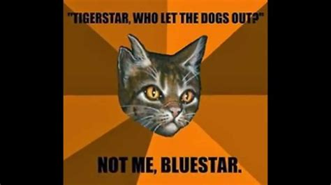 Warriors Memes - warrior cat memes funny dog breeds picture