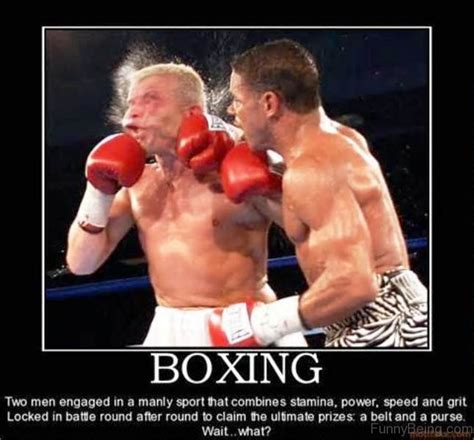 70 boxing memes for you