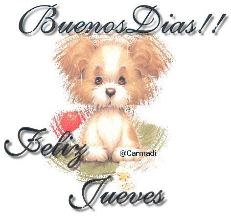 imagenes buenos dias lindo jueves lindo perrito te desea 161 buenos d 237 as y feliz jueves
