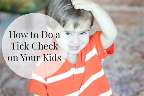 how to check for ticks how to do a tick check on your