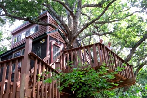 Treehouse Cabins Illinois by Tree House Illinois Stay Gling Illinois Mid West
