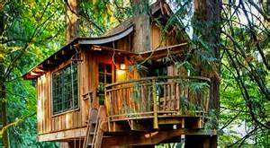 Cool tree house ideas to take your project to the next level