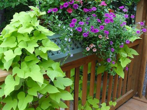 deck railing planters planter boxes with minimalist outdoor planter black