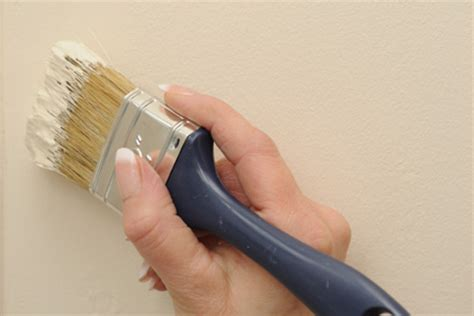 Interior Touch Up Paint by Best Ways To Touch Up Paint Diy True Value Projects