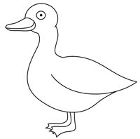 How To Draw Ducks cartoon ducks step by step drawing lesson