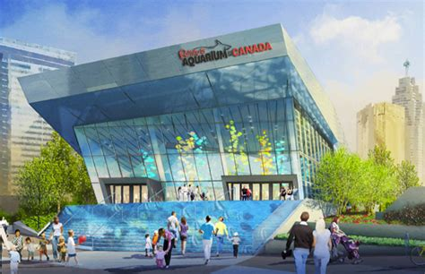 aquarium design toronto ripley s aquarium of canada launches largest aquarium in