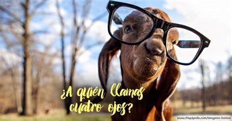 www fotosde pijas rosarinas comentarios las mejores imagenes de risa fotos chistosas y divertidas