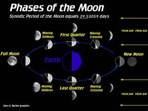 lunar phases worksheet abitlikethis