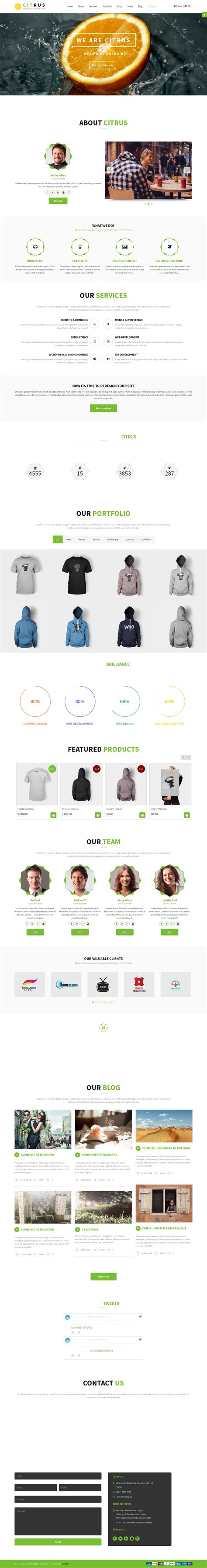shopify themes parallax 5 shopify premium themes for photographers photo stores