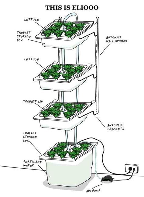 indoor hydroponic wall garden 140 best images about vertical farming on pinterest