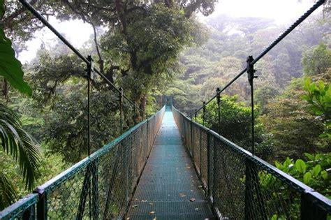 turisti per caso costa rica foresta nebulare monteverde costa rica viaggi vacanze