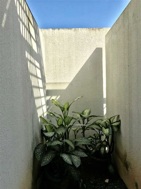 casa kopi benhil project brick facade house desain arsitek oleh ago