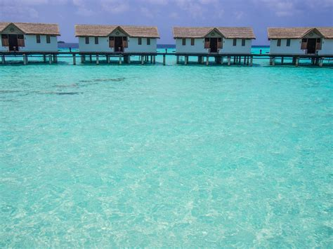 cheap overwater bungalows maldives a come true staying in an overwater bungalow in the