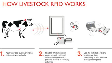 Devices That Make Life Easier by Livestock Id Datamars