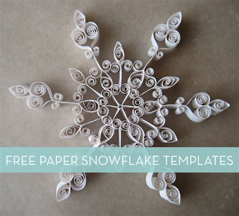 3 Folded Brochure Template – 6 Tri Fold Brochure Template Indesign   AF Templates