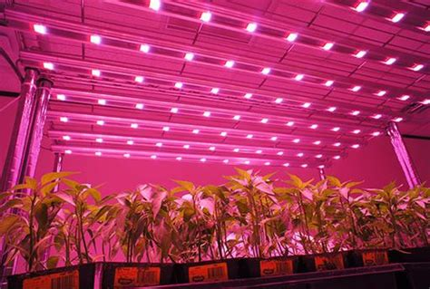 Top 5 Led Grow Lights 2016 - current top led grow lights