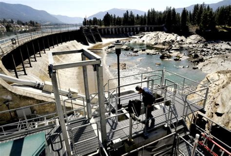 Montana Background Check Economist Northwestern Should More Risk In Dam Purchase Local Missoulian