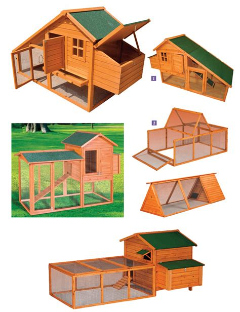 come costruire una gabbia per galline galline ovaiole e pulcini guida completa all allevamento
