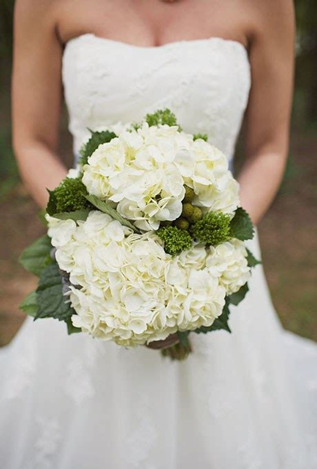 Wedding Flowers Hydrangea by Hydrangea Flowers Wedding Www Pixshark Images