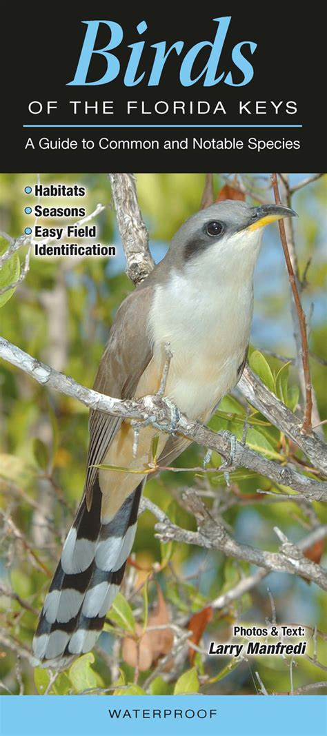 birds of the florida keys quick reference publishing