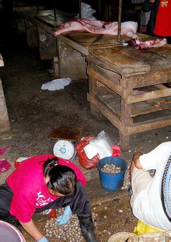 Kerang Di Pasar kerang atas darah babi di pasar chow kit yanmieonline