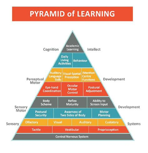 the inventive mind the adhd learning model book 1 books the pyramid of learning ot learning