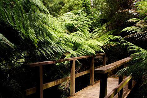 Australian National Botanic Gardens Australian National Botanic Gardens