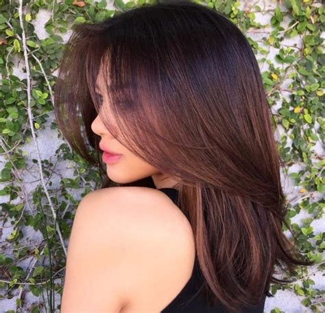 chestnut colored hair chestnut brown hair 10 stunning ways to rock this sultry