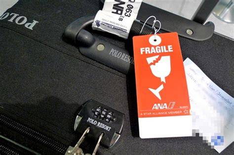 spirit airlines baggage claim phone number 28 incredibly useful packing hacks matador network