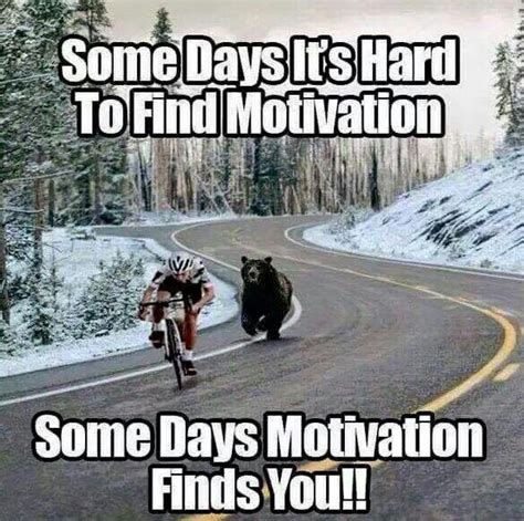 Funny Encouraging Memes - 25 best ideas about funny motivation on pinterest happy