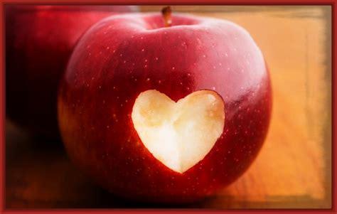 imagenes bonitos de corazones imagenes de flores y corazones tattoo design bild