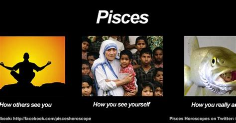Pisces Meme - funny pisces meme zodiac memes pinterest pisces