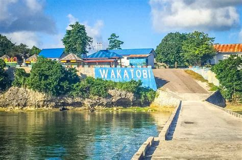 reasons  visit wakatobi indonesia  stamped