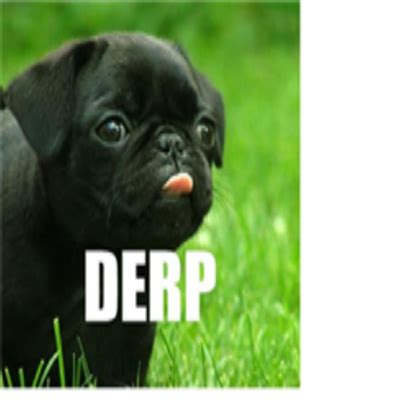 derpy puppy derpy puppy a decal by c0lbyg roblox updated 4 14 2012 7 27 41 pm