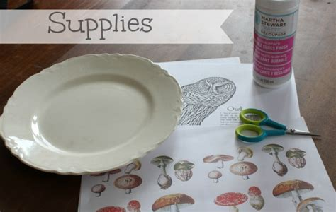 Decoupage Items - as soon as i saw you decoupage owl plate