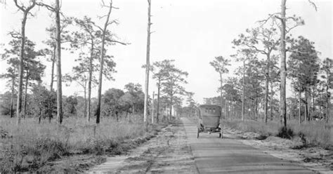Polk County Fl Civil Search Florida Memory Asphalt Macadamized Road Connecting Haines City With Lake Hamilton