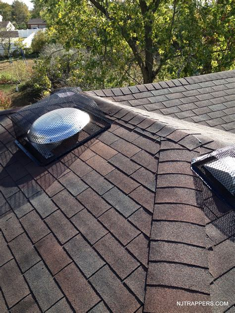 venting exhaust fan through roof dryer vent through roof home design ideas and pictures
