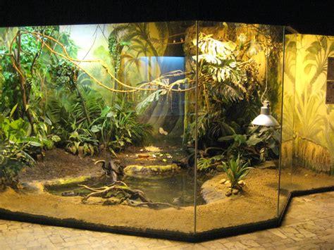 Living Room Ideas Habitat Reptile Enclosure For Large Species Animals