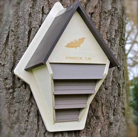schubkästen selber bauen brutkasten selber bauen vogelhaus selber bauen aus holz