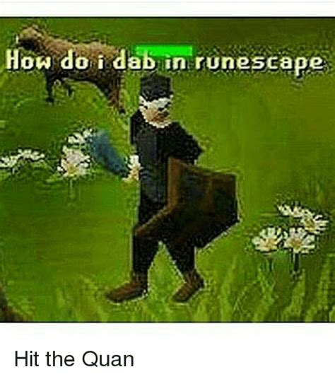 Runescape Meme - 25 best memes about hit the quan hit the quan memes