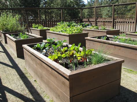 raised bed garden shambhala pottery where the day went