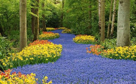 Largest Flower Garden The Largest Flower Gardens In The World Gardening At