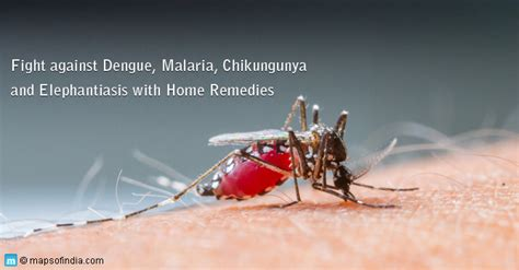 get away repellent mosquito repellents how to keep mosquitoes away my india